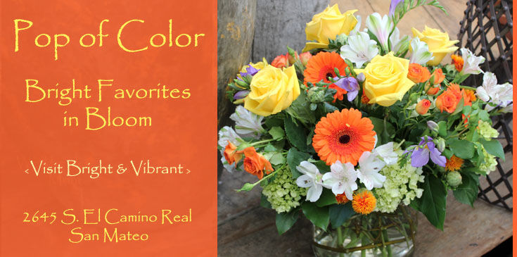 Ah Sam Florist Delivers to San Mateo, Burlingame, Hillsborough, Foster City, Menlo Park, Redwood City, San Carlos, Atherton, Belmont, Redwood Shores, Palo Alto, Mountain View, Sunnyvale, South San Francisco, San Jose, East Bay, San Francisco.  Flowers in a pop of color make the moment better.  The Blossom of Joy brings a smile to all.
