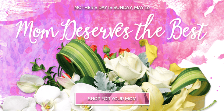 Mother's Day is Sunday, May 10.  Find the perfect gift for Mom in our Mother's Day collection and we'll deliver your love. Delivery to San Mateo, Burlingame, Hillsborough, Foster City, Menlo Park, Redwood City, San Carlos, Atherton, Belmont, Redwood Shores, Palo Alto, Mountain View, Sunnyvale, South San Francisco, San Jose, East Bay, San Francisco.