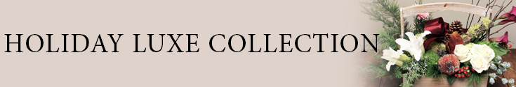 Holiday Luxe Collection